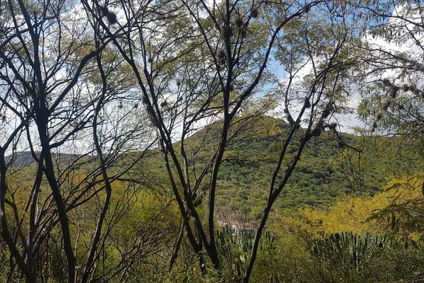 Foto de terreno habitacional en venta en condominio cumbre (altozano) , san pedrito el alto, querétaro, querétaro, 9231663 No. 06