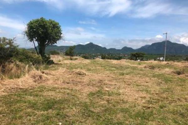 Foto de terreno habitacional en venta en conjunto lomas del paraíso ii , tlayacapan, tlayacapan, morelos, 3352262 No. 06