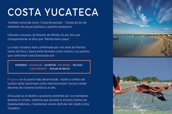 Foto de terreno habitacional en venta en conkal , chicxulub, chicxulub pueblo, yucatán, 10222294 No. 03