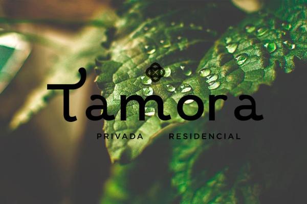 Foto de terreno habitacional en venta en  , conkal, conkal, yucatán, 14028820 No. 01