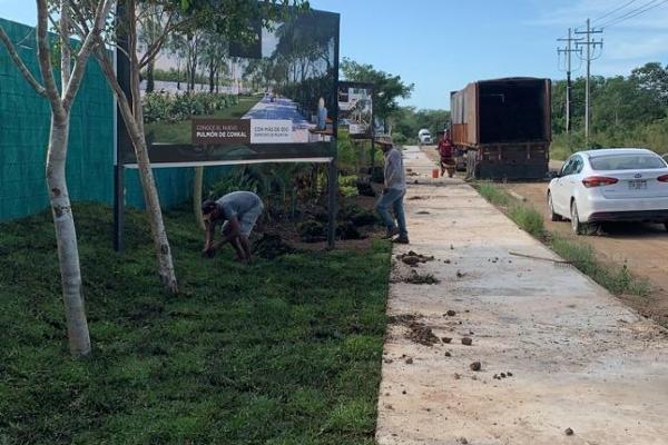 Foto de terreno habitacional en venta en  , conkal, conkal, yucatán, 0 No. 17