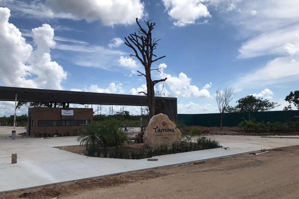 Foto de terreno habitacional en venta en  , conkal, conkal, yucatán, 14028820 No. 43