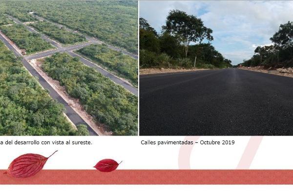 Foto de terreno habitacional en venta en  , conkal, conkal, yucatán, 14028856 No. 09