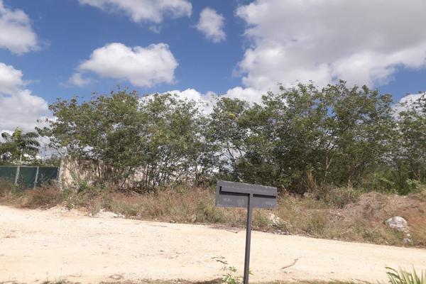 Foto de terreno habitacional en venta en  , conkal, conkal, yucatán, 19826202 No. 02