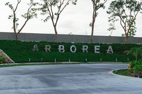 Foto de terreno habitacional en venta en  , conkal, conkal, yucatán, 2623654 No. 02