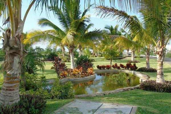 Foto de terreno habitacional en venta en  , conkal, conkal, yucatán, 4284645 No. 06