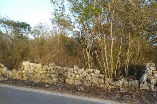 Foto de terreno habitacional en venta en  , conkal, conkal, yucatán, 4673074 No. 01