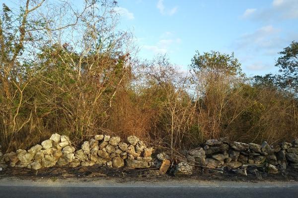 Foto de terreno habitacional en venta en  , conkal, conkal, yucatán, 4673074 No. 02