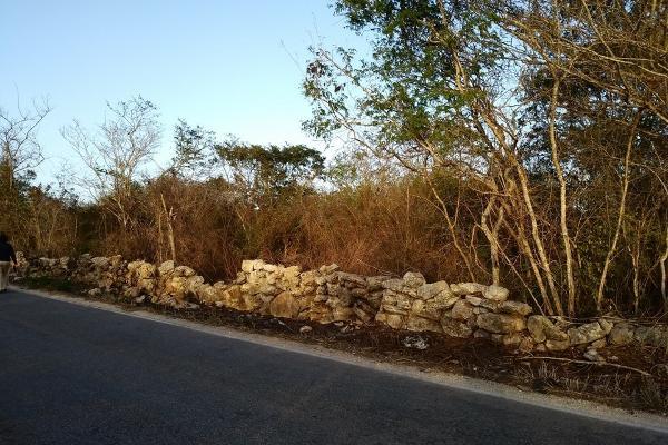 Foto de terreno habitacional en venta en  , conkal, conkal, yucatán, 4673074 No. 03