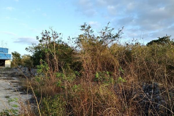 Foto de terreno habitacional en venta en  , conkal, conkal, yucatán, 4673074 No. 04