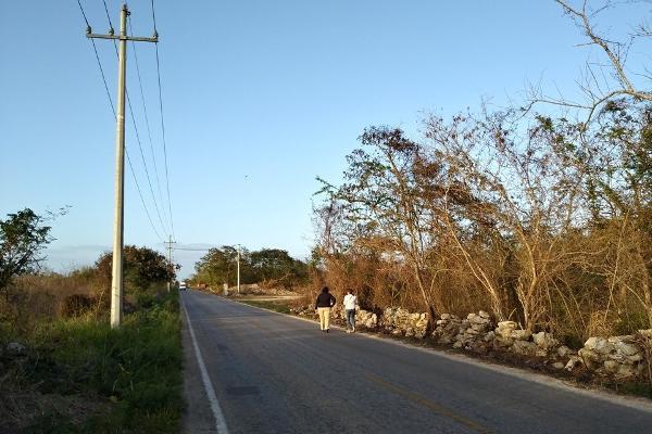 Foto de terreno habitacional en venta en  , conkal, conkal, yucatán, 4673074 No. 05