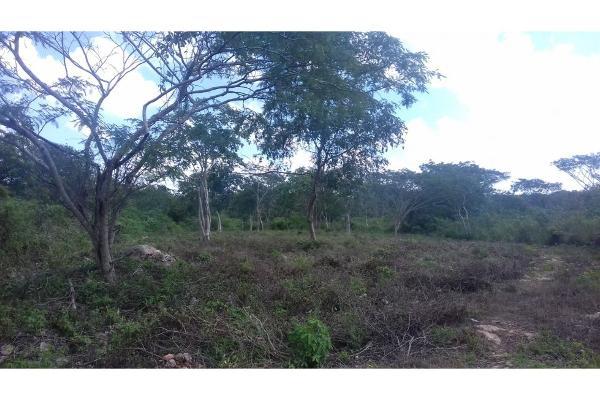 Foto de terreno habitacional en venta en  , conkal, conkal, yucatán, 5690238 No. 12