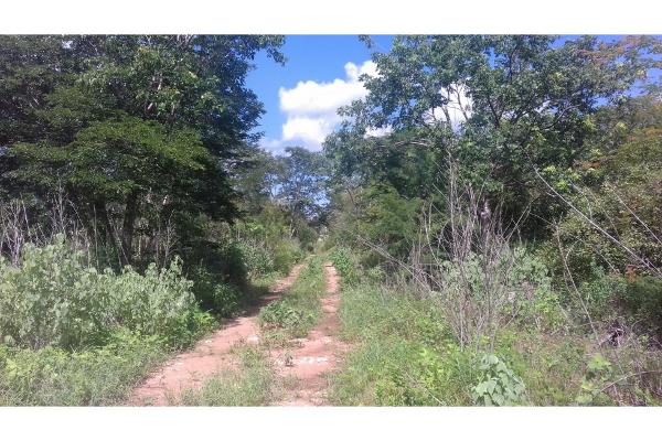 Foto de terreno habitacional en venta en  , conkal, conkal, yucatán, 5690238 No. 14