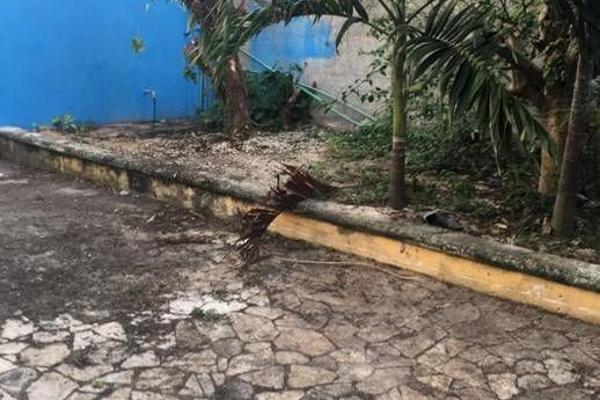 Foto de nave industrial en venta en  , conkal, conkal, yucatán, 6190711 No. 06