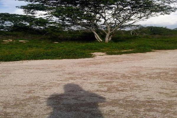 Foto de terreno habitacional en venta en  , conkal, conkal, yucatán, 7927267 No. 06