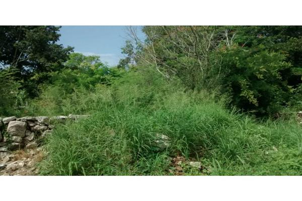 Foto de terreno habitacional en venta en  , conkal, conkal, yucatán, 8187292 No. 03