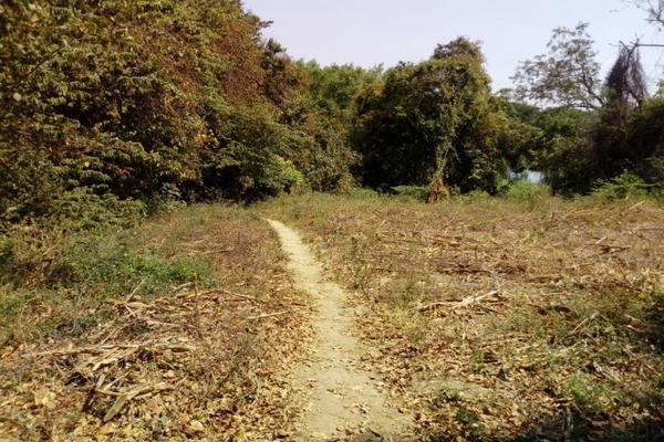 Foto de terreno comercial en venta en conocida 0, santa cecilia, chiapa de corzo, chiapas, 5915217 No. 01