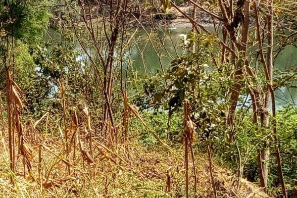 Foto de terreno comercial en venta en conocida 0, santa cecilia, chiapa de corzo, chiapas, 5915217 No. 04
