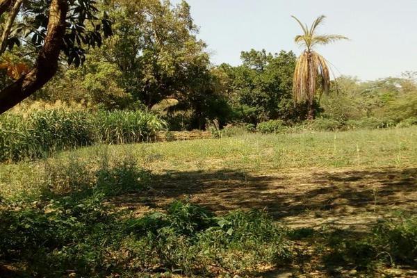 Foto de terreno comercial en venta en conocida 0, santa cecilia, chiapa de corzo, chiapas, 5915217 No. 06