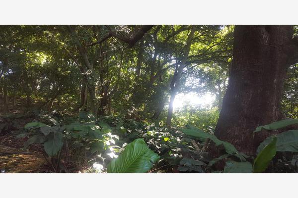 Foto de terreno comercial en venta en conocida 0, santa cecilia, chiapa de corzo, chiapas, 5915217 No. 16