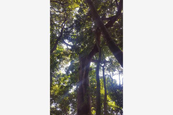Foto de terreno comercial en venta en conocida 0, santa cecilia, chiapa de corzo, chiapas, 5915217 No. 18