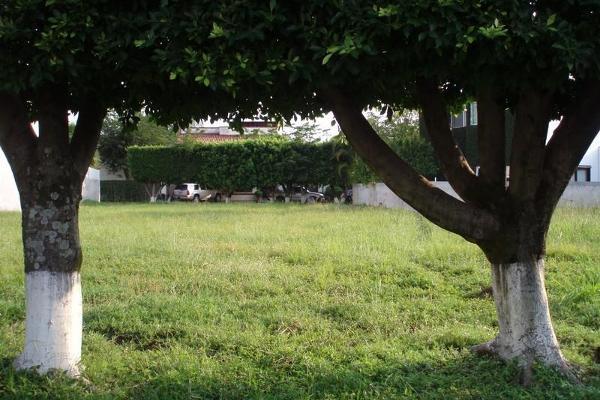 Foto de terreno habitacional en venta en  , sumiya, jiutepec, morelos, 3443115 No. 02