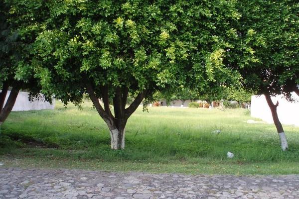 Foto de terreno habitacional en venta en  , sumiya, jiutepec, morelos, 3443115 No. 05