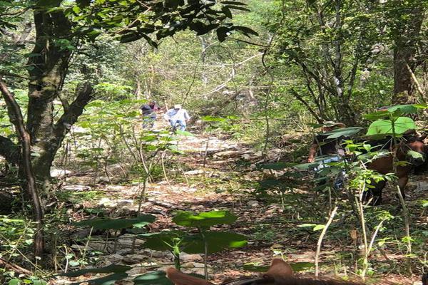 Foto de terreno habitacional en venta en conocido , tamasopo centro, tamasopo, san luis potosí, 0 No. 03