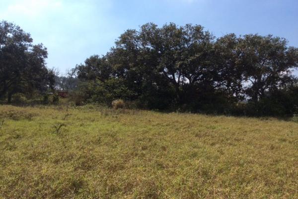 Foto de terreno comercial en venta en corredor urbano ctv2172 , miramar, ciudad madero, tamaulipas, 3628081 No. 03