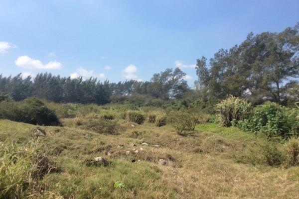 Foto de terreno comercial en venta en corredor urbano ctv2172 , miramar, ciudad madero, tamaulipas, 3628081 No. 06