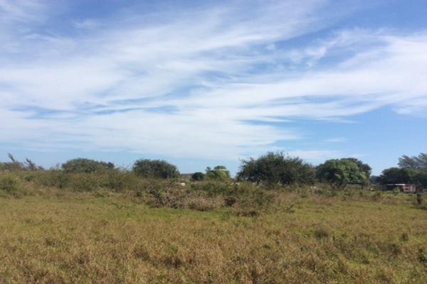 Foto de terreno comercial en venta en corredor urbano ctv2172 , miramar, ciudad madero, tamaulipas, 3628081 No. 07
