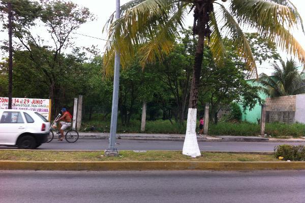 Foto de terreno comercial en venta en  , cozumel centro, cozumel, quintana roo, 2640693 No. 04