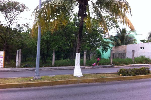 Foto de terreno comercial en venta en  , cozumel centro, cozumel, quintana roo, 2640693 No. 05