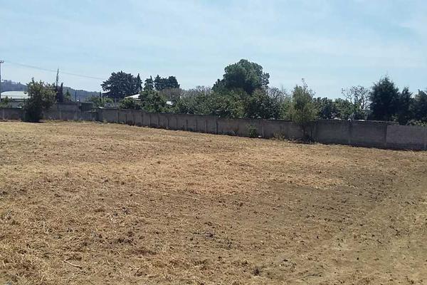 Foto de terreno habitacional en venta en cruz verde , san josé tlacotitlán, ozumba, méxico, 0 No. 04