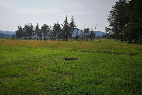 Foto de terreno habitacional en venta en  , cuadrilla de dolores, valle de bravo, méxico, 9265882 No. 01