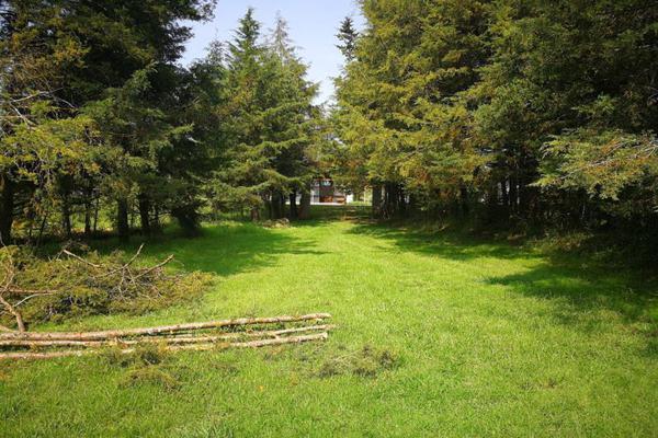 Foto de terreno habitacional en venta en  , cuadrilla de dolores, valle de bravo, méxico, 9265882 No. 12