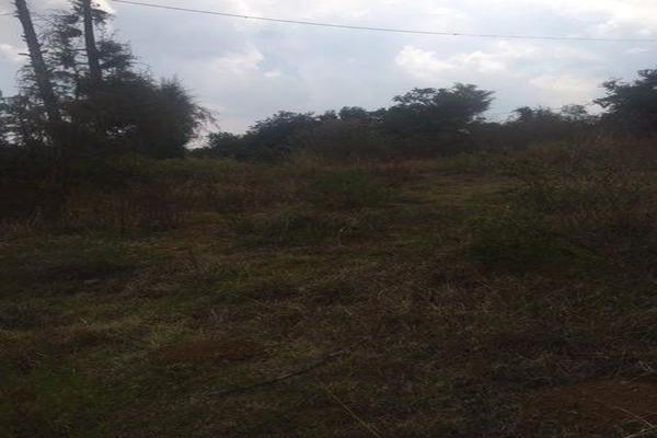 Foto de terreno comercial en venta en  , cuanajo, pátzcuaro, michoacán de ocampo, 7537418 No. 02