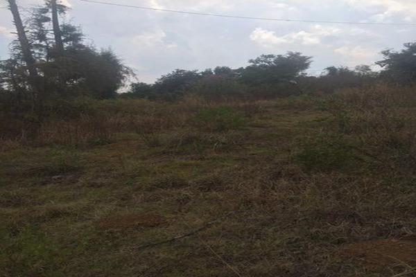 Foto de terreno comercial en venta en  , cuanajo, pátzcuaro, michoacán de ocampo, 7537418 No. 03