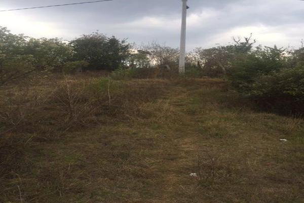 Foto de terreno comercial en venta en  , cuanajo, pátzcuaro, michoacán de ocampo, 7537418 No. 04