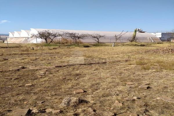 Foto de terreno habitacional en venta en cuatemoc , tzitla, chignahuapan, puebla, 9129697 No. 02