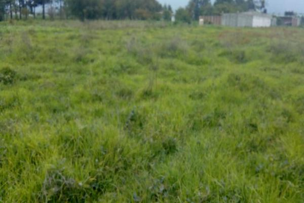 Foto de terreno habitacional en venta en cuauchixco 0 , san jacinto, atlautla, méxico, 0 No. 01