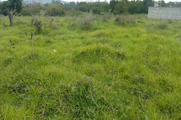 Foto de terreno habitacional en venta en cuauchixco 0 , san jacinto, atlautla, méxico, 0 No. 02
