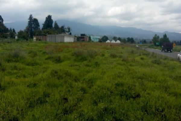 Foto de terreno habitacional en venta en cuauchixco 0 , san jacinto, atlautla, méxico, 0 No. 06