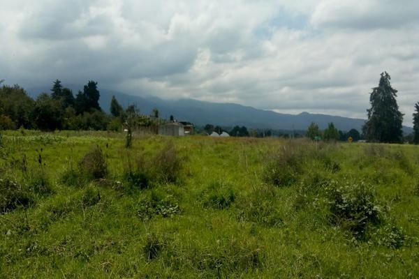 Foto de terreno habitacional en venta en cuauchixco 0 , san jacinto, atlautla, méxico, 0 No. 07
