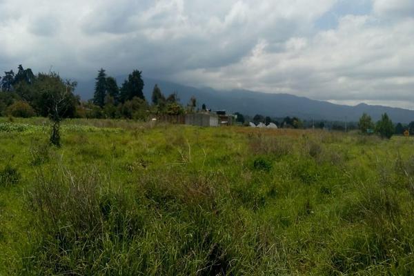 Foto de terreno habitacional en venta en cuauchixco 0 , san jacinto, atlautla, méxico, 0 No. 08