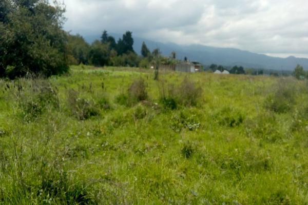 Foto de terreno habitacional en venta en cuauchixco 0 , san jacinto, atlautla, méxico, 0 No. 10