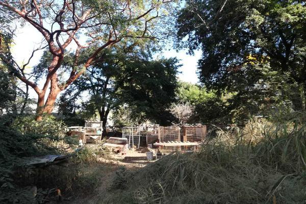 Foto de terreno habitacional en venta en cuauhtemoc 93 a , villa de alvarez centro, villa de álvarez, colima, 19350820 No. 09