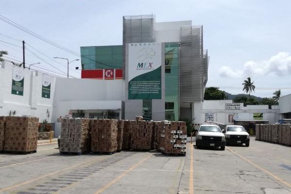 Foto de nave industrial en venta en  , cuauhtémoc, acapulco de juárez, guerrero, 0 No. 10