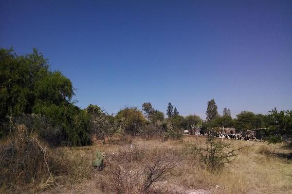 Foto de terreno habitacional en venta en  , cuauhtémoc, aguascalientes, aguascalientes, 7977867 No. 04