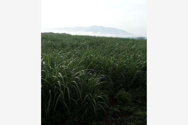 Foto de terreno habitacional en venta en cuauhtémoc kilometro, cuauhtémoc, cuauhtémoc, colima, 10083159 No. 04